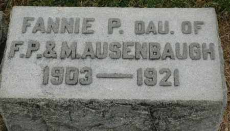 AUSENBAUGH, FANNIE P. - Wood County, Ohio | FANNIE P. AUSENBAUGH - Ohio Gravestone Photos