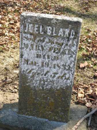 FELTIS, JOEL BLAND - Wyandot County, Ohio | JOEL BLAND FELTIS - Ohio Gravestone Photos