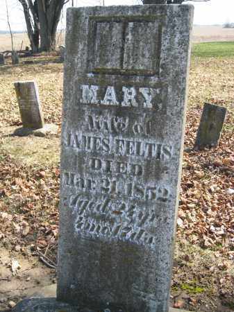 FELTIS, MARY - Wyandot County, Ohio | MARY FELTIS - Ohio Gravestone Photos