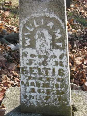 FELTIS, WILLIAM F - Wyandot County, Ohio   WILLIAM F FELTIS - Ohio Gravestone Photos