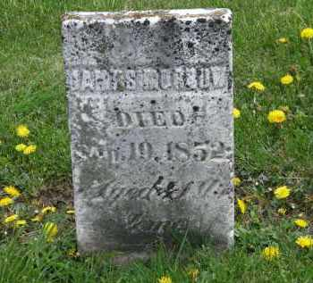 MORROW, JAMES - Wyandot County, Ohio | JAMES MORROW - Ohio Gravestone Photos