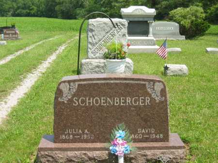SCHOENBERGER, DAVID - Wyandot County, Ohio | DAVID SCHOENBERGER - Ohio Gravestone Photos