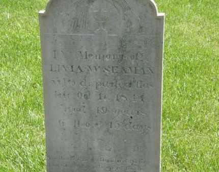 SEAMAN, LIVIA W. - Wyandot County, Ohio | LIVIA W. SEAMAN - Ohio Gravestone Photos