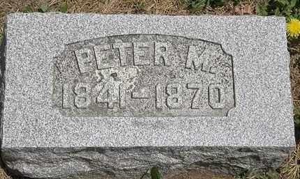 SNYDER, PETER M. - Wyandot County, Ohio | PETER M. SNYDER - Ohio Gravestone Photos