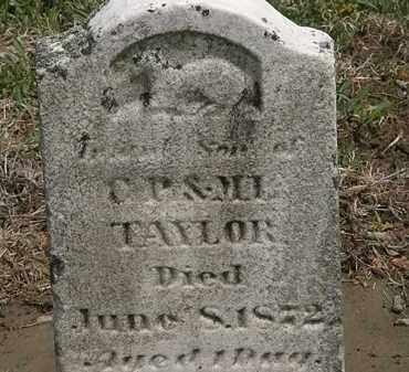 TAYLOR, INFANT SON - Wyandot County, Ohio | INFANT SON TAYLOR - Ohio Gravestone Photos
